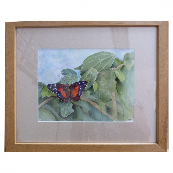 Butterfly in watercolour
