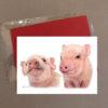 Pig Greeting Card 3