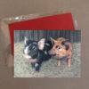 Pigs Greeting Card 4