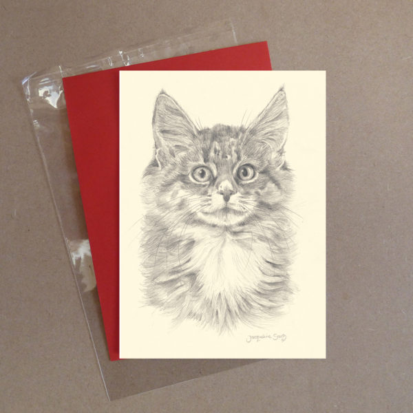 Cat Greeting Card 1