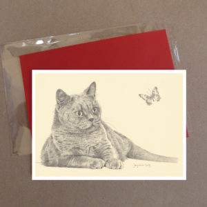Cat Greeting Card 8