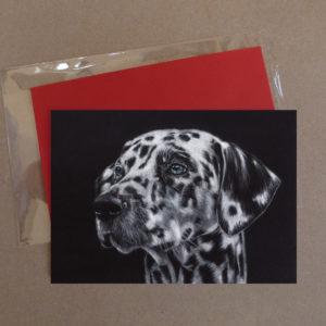 Dalmation Greeting Card