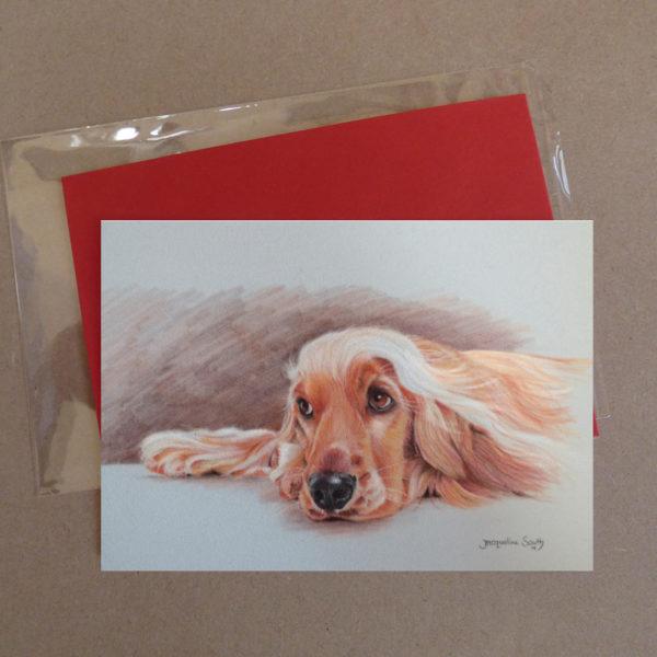 Spaniel Greeting Card 1