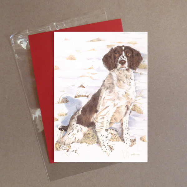 Spaniel Greeting Card 2