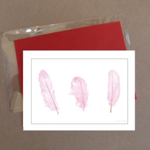 Pink Feathers Greeting Card